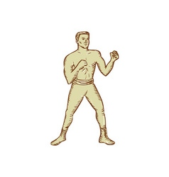 Vintage Boxer Pose Etching vector image