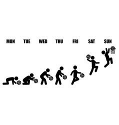 Weekly working life evolution basketball vector