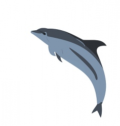 Realistic illustration of a dolphin vector