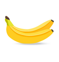 banana isolated on white vector image