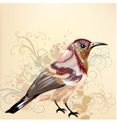 beautiful background with hand drawn bird vector image
