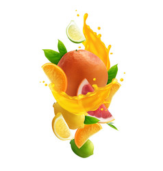 Citrus juice realistic composition vector