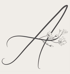 Hand drawn flowered a monogram and logo vector