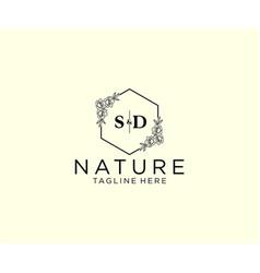 Initial sd letters botanical feminine logo vector