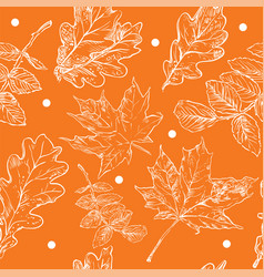 seamless pattern autumn 6 vector image