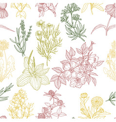 seamless pattern white background and color vector image