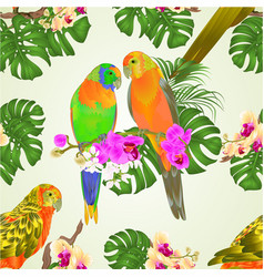 seamless texture sun conure parrots vector image