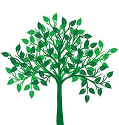 a green tree vector image vector image