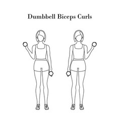 Dumbbell biceps curls exercise outline vector