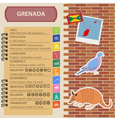 Grenada infographics statistical data sights vector image vector image