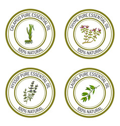 set of essential oil labels vector image