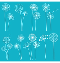 Set of dandelions vector image