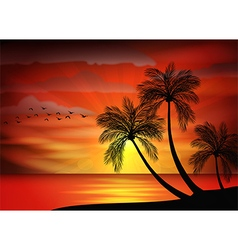 Sunset background with bird and pa vector image