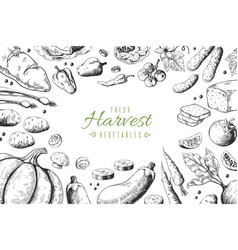 hand drawn vegetables background organic food vector image