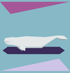 flat design beluga whale vector image