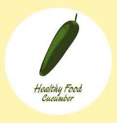 green cucumber healthy food concept vector image