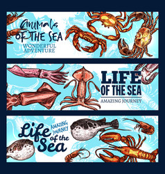 Sea life poster of sketch animals and fish vector