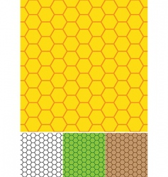 bee cells seamless texture vector image vector image