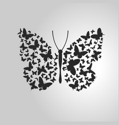 butterfly out of lots of small butterflies vector image
