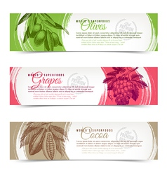 Banners with hand drawn foods vector image vector image