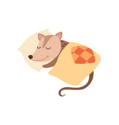 cute opossum sleeping in bed adorable wild animal vector image