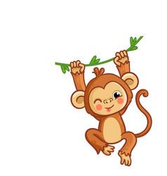 Monkey winks the animal is hanging vector