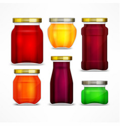 Set of jars with jam vector