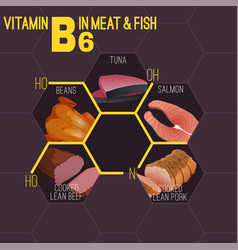 vitamin formula image vector image
