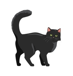 Black cat Flat Design vector image vector image
