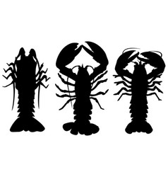 Different lobsters vector
