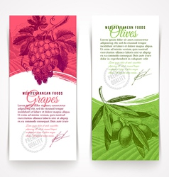 Vertical banners with hand drawn foogs vector image