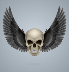 Evil skull with wings vector