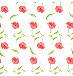 red poppy flower romantic pattern vector image vector image