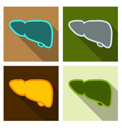 A healthy liver and liver with cirrhosis vector