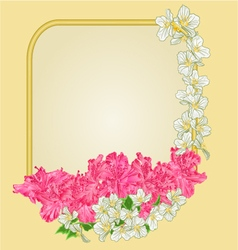 Frame with rhododendron and jasmine greeting card vector
