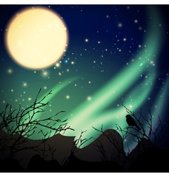 Night with northern lights vector