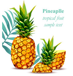 Pineapple fruit tropical style card vector