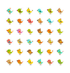 set of cute birds isolated on white in flat style vector image
