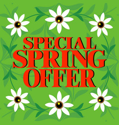 Special spring offer beautiful colorful card vector