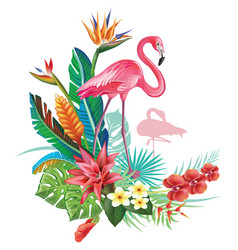 Tropical decoration with flamingoes and trop vector