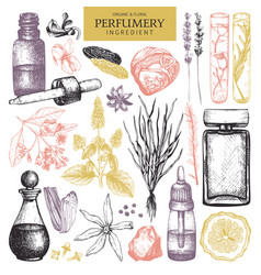 Vintage perfumery and cosmetics set vector