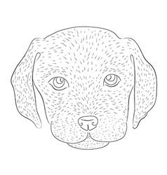 Lab vector image vector image
