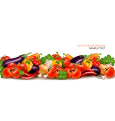 Banner made of fresh colorful vegetables vector image
