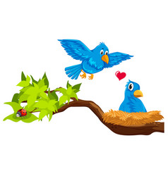Bird couple in nest vector