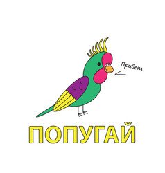 Cartoon parrot flashcard for children vector