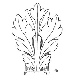 Gothic leaf has a general naturalistic style vector