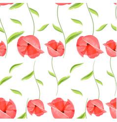 red poppy flower romantic pattern vector image