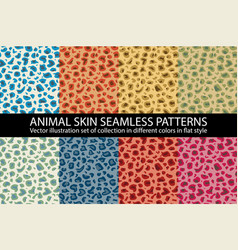 set color animal skin seamless pattern texture vector image
