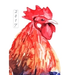 watercolor fire cock on white background vector image