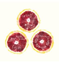 watercolor orange slice circles hand drawn doodle vector image vector image